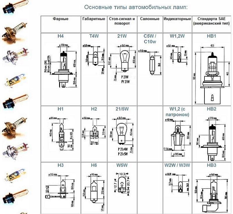 Список с картинками - основные типы автомобильных ламп