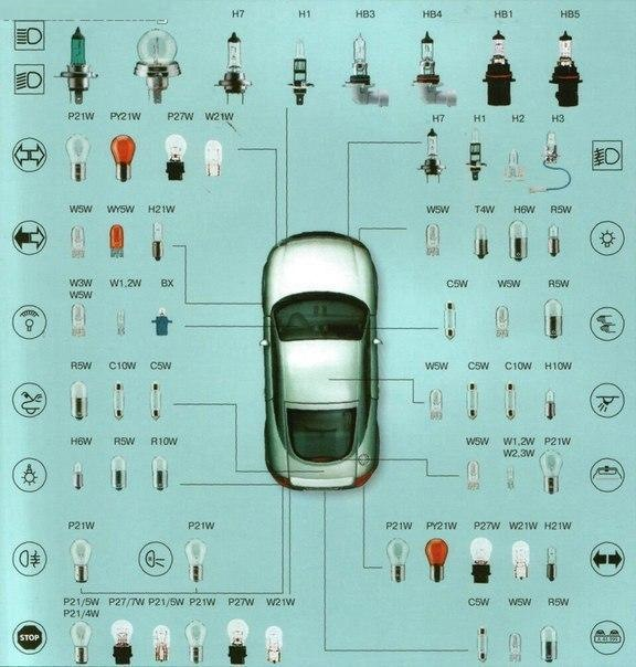 Типы цоколей в рамках одного автомобиля